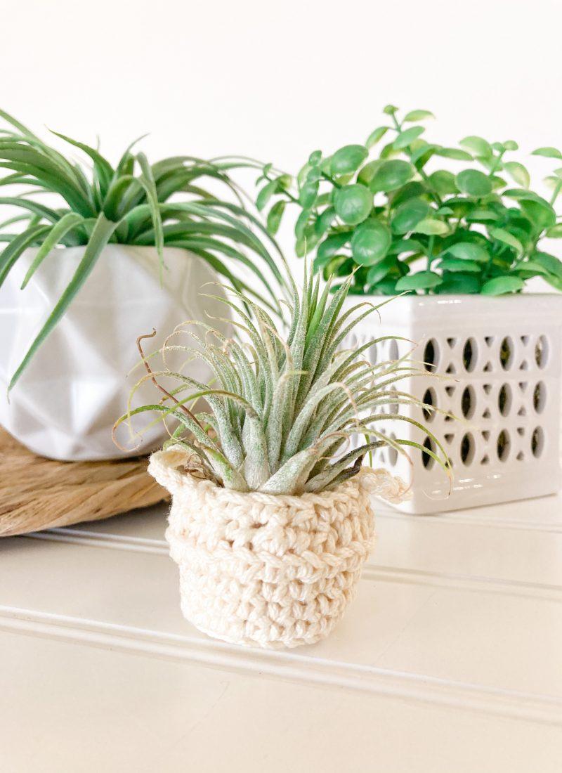 Air Plant Basket Holder Crochet Pattern | Free Pattern!
